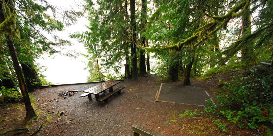 Lake Quinault, Willaby Campground   Outdoor Project ...