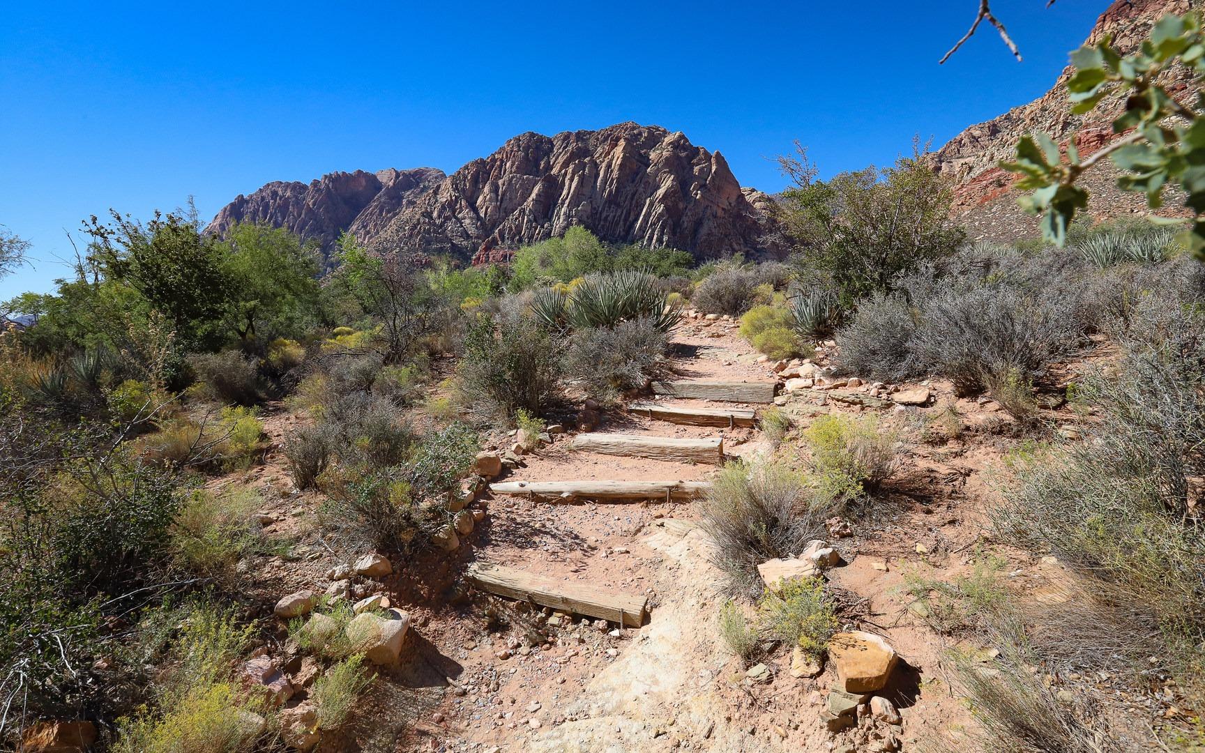 Overlook Loop Trail | Outdoor Project