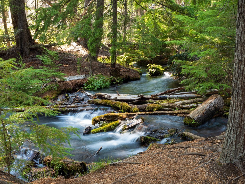 June Lake Loop | Outdoor Project | June lake, June lake