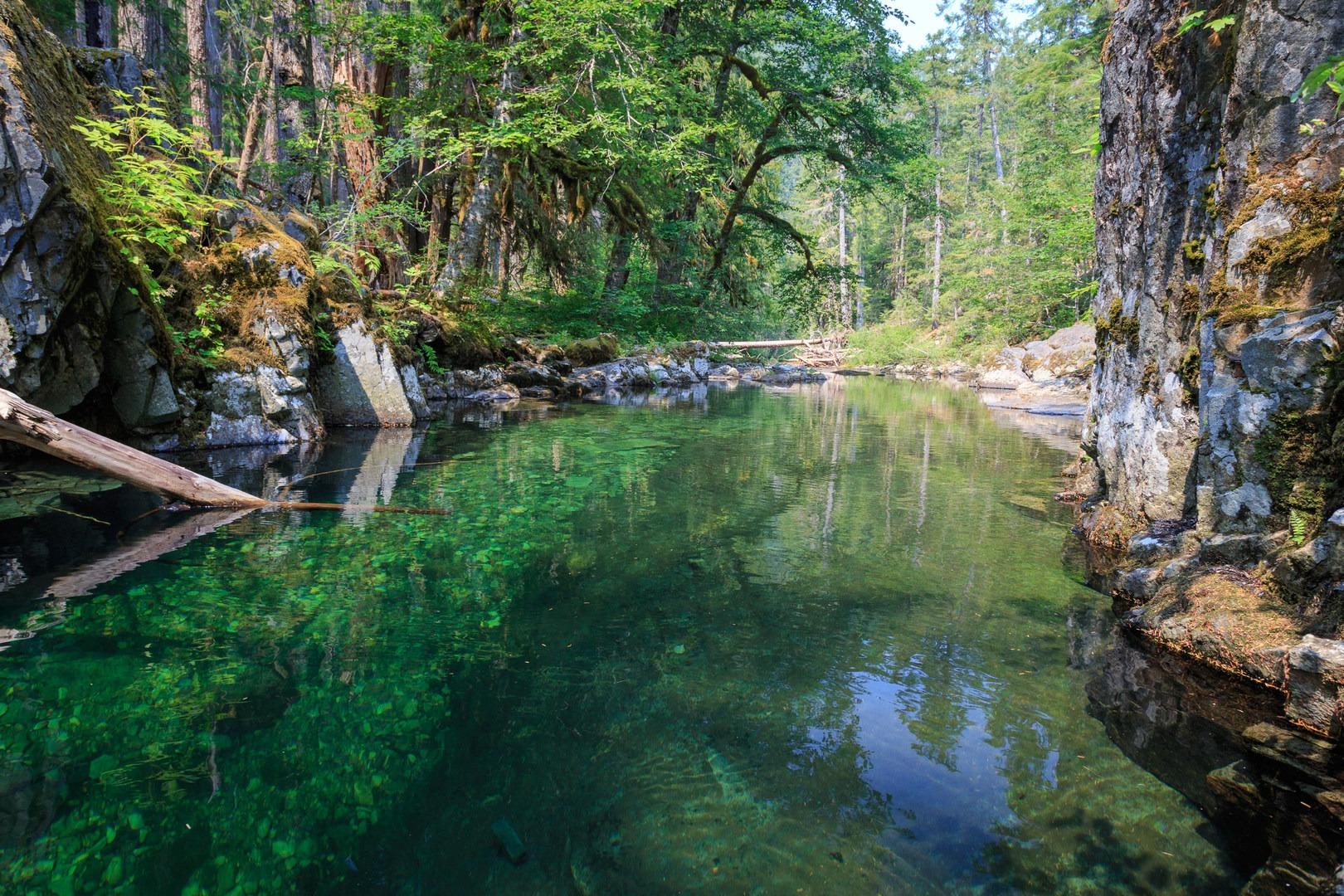 Elk Lake Creek North Trailhead To Battle Creek Outdoor