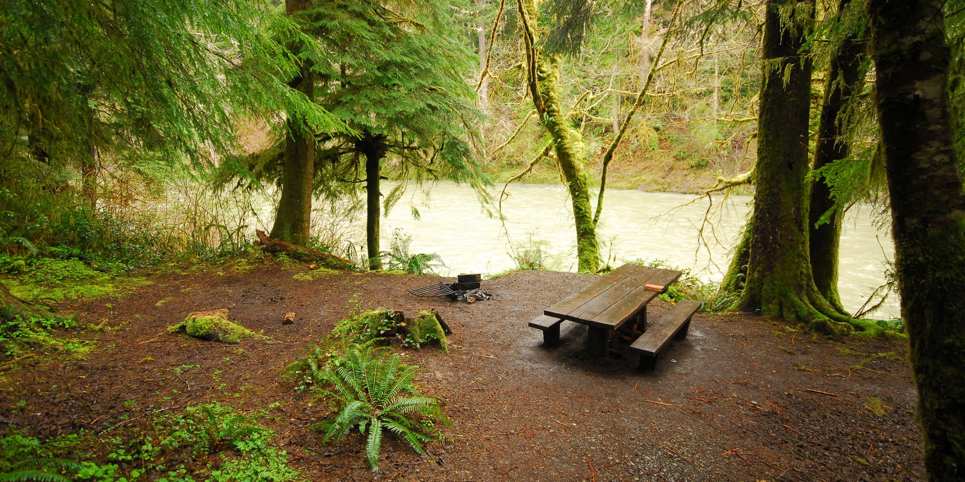 Hoh Oxbow Campground | Outdoor Project