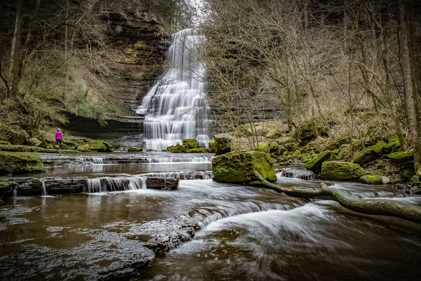 10 Must-Do Hikes Near Nashville, Tennessee