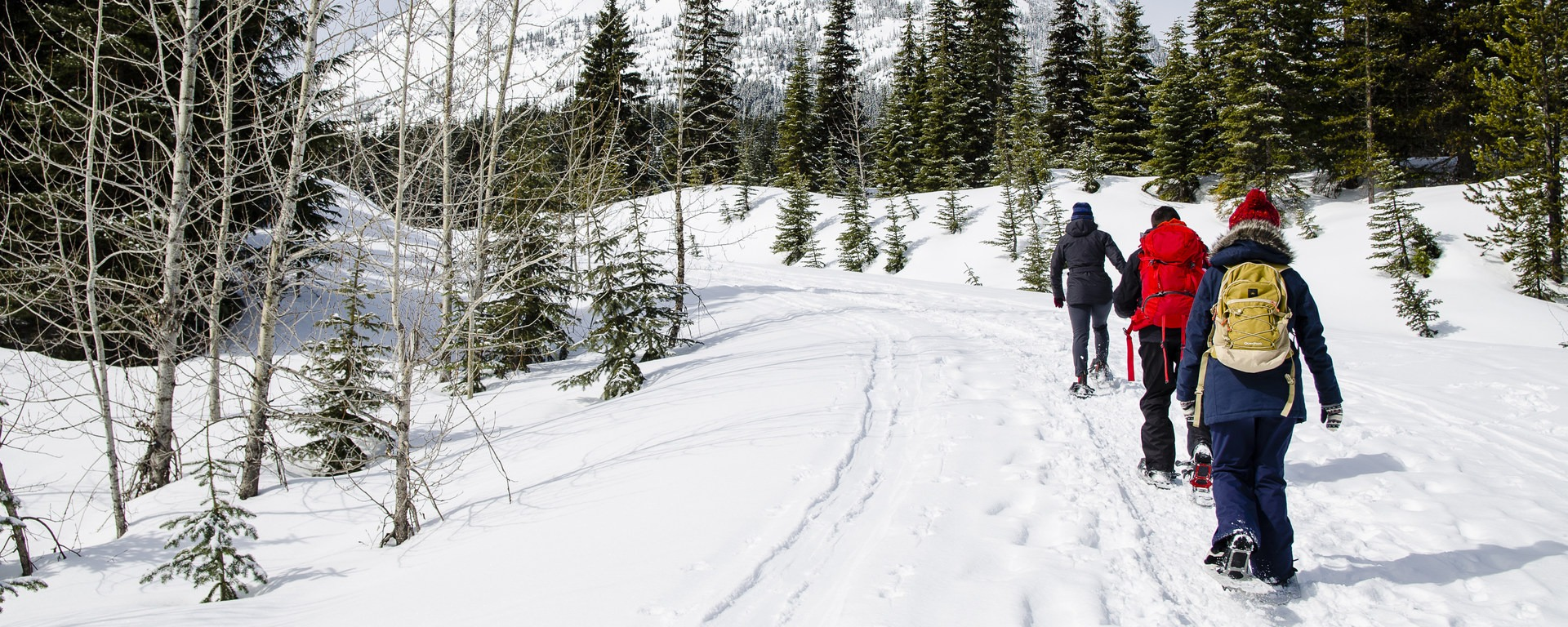 Best Rain, Snow, and Cold Weather Gear for Winter 2019 ...
