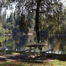 Nolte State Park, Deep Lake, Washington, Outdoor Project