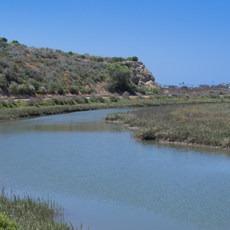 Upper Newport Bay, California, Outdoor Project
