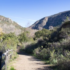 Mission Trails Regional Park, Visitor Center Loop, California, Outdoor Project