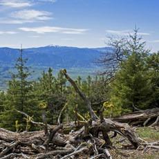 Greensprings Loop, Oregon, Outdoor Project