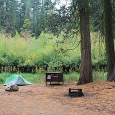 Azalea Campground, California, Outdoor Project