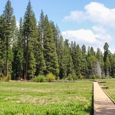 North Grove Campground, California, Outdoor Project