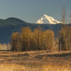 Steigerwald Lake National Wildlife Refuge, Washington, Outdoor Project