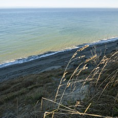 Dungeness Recreation Area Campground, Washington, Outdoor Project
