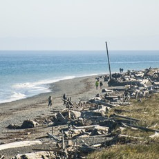 Dungeness Spit, Washington, Outdoor Project