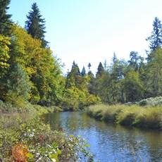 Elijah Bristow State Park, Oregon, Outdoor Project