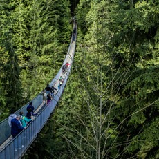 Capilano Suspension Bridge Park, British Columbia, Outdoor Project