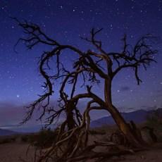 Mesquite Flat Sand Dunes, California, Outdoor Project
