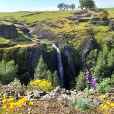 Ravine + Phantom Falls, North Table Mountain Ecological Reserve, California, Outdoor Project