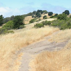 Arroyo Trail , California, Outdoor Project