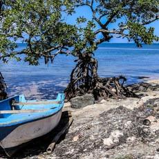 Punta Gorda, Roatan, Other, Outdoor Project