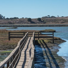 South Marsh Loop, California, Outdoor Project