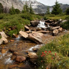 Fall Creek - Surprise Valley, Broad Canyon Divide, Idaho, Outdoor Project