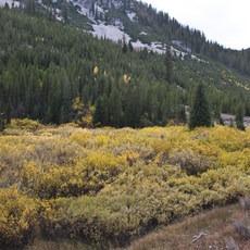 Smiley Creek to Big Smoky