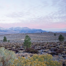 Mono Basin National Forest Scenic Area, California, Outdoor Project