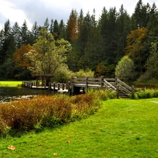 Silver Lake Park, Washington, Outdoor Project