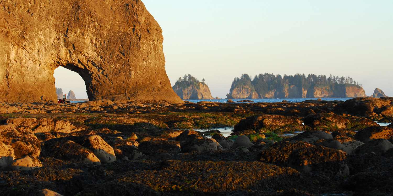 16 Best Hikes on the Washington Coast