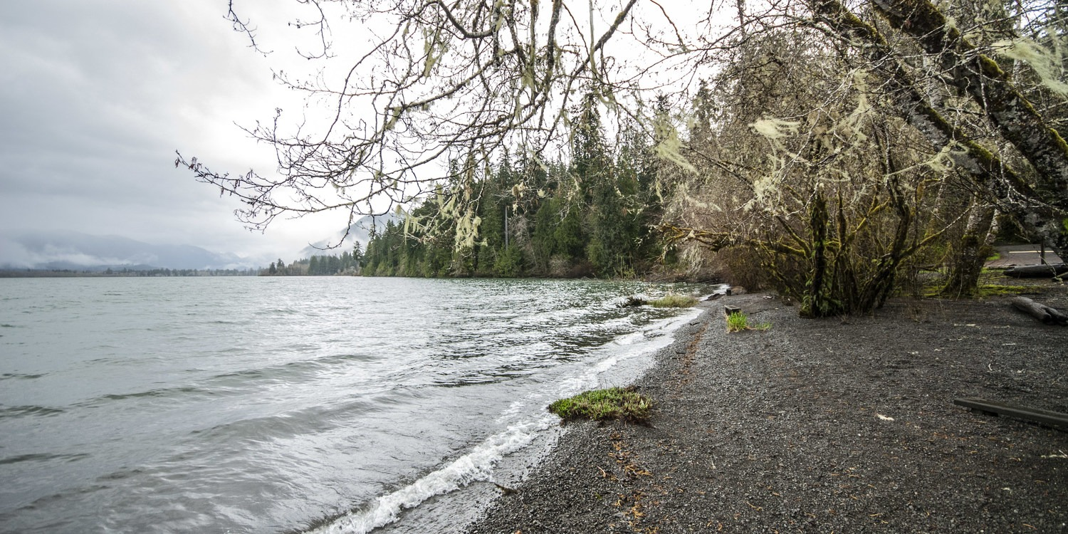 Lake Quinault, Willaby Campground - Quinault National ...