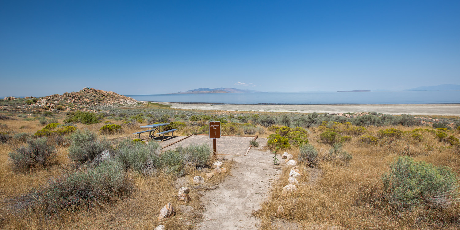Lady Finger Campground Antelope Island State Park