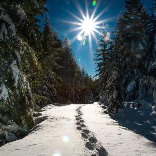 Ikenick Sno-Park Snowshoe