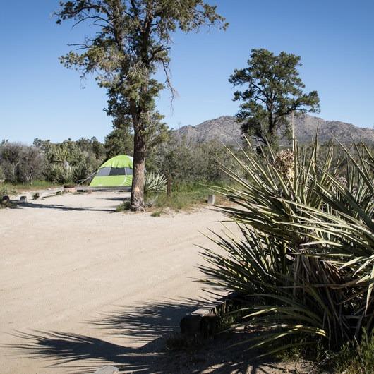 Piñyon Flat Campground