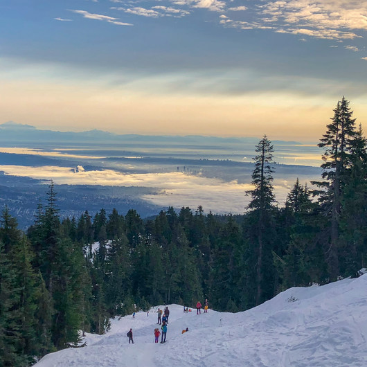 Hollyburn Mountain Snowshoe