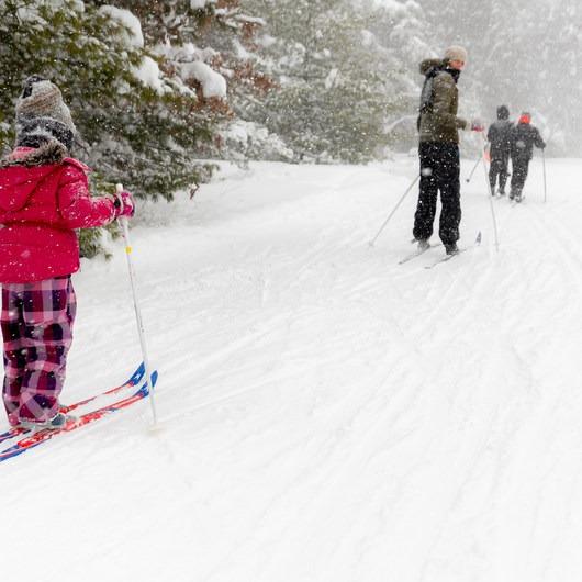 Pigeon Creek State Park Ski + Snowshoeing