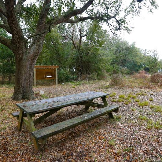 Peveto Woods Sanctuary