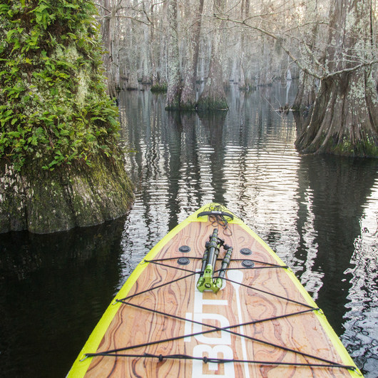 Lake Chicot Water Trail