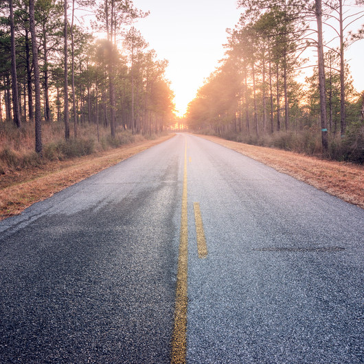 Longleaf Scenic Byway