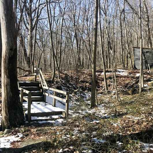 Beckman Trail