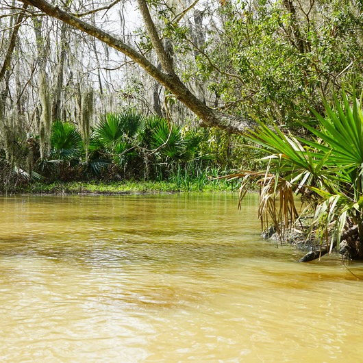 Franklin + Bayou Teche Paddle Trails
