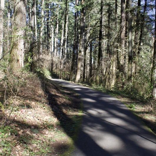 Lowami Hart Woods Natural Area