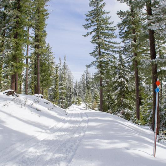 Little Nash Snow Trail