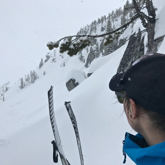 Rogers Pass: Grizzly Shoulder