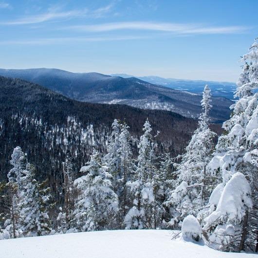 Mount Cabot Snowshoe