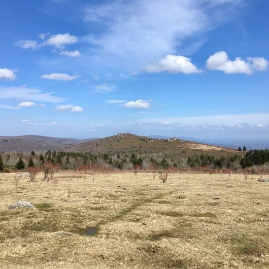 Grayson Highlands Backpacking Loop