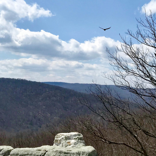 Wolf Rock + Chimney Rock Loop