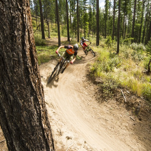 Kimberley Nordic Club Mountain Bike Trails: Round the Mountain