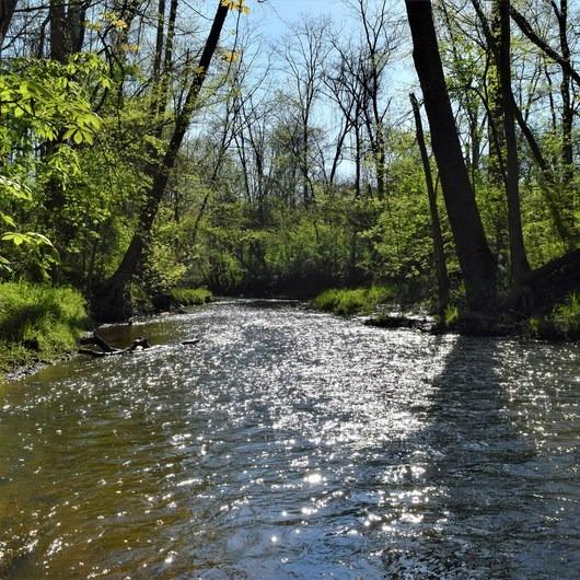 Bicentennial Woods Nature Preserve