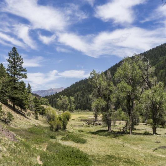 Piedra River Trail