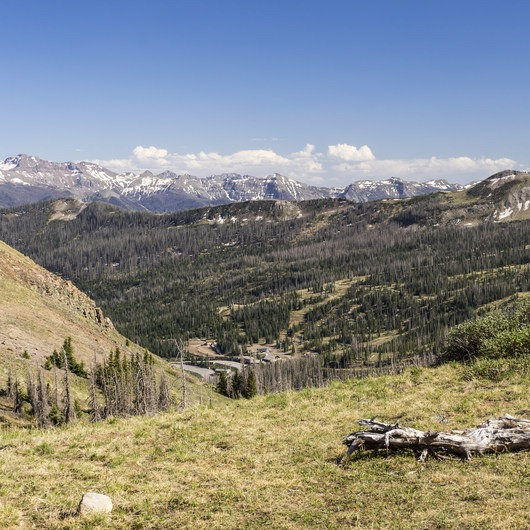 Lobo Pass Trail + Continental Divide Trail