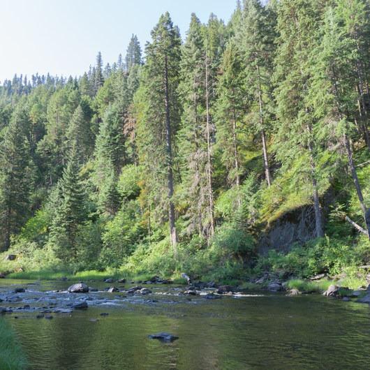 North Fork John Day River Trail via Oriental Creek Trailhead